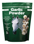 GARLIC POWDER 1KG AGLIO IN POLVERE